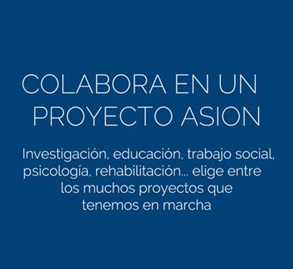 colabora-proyecto
