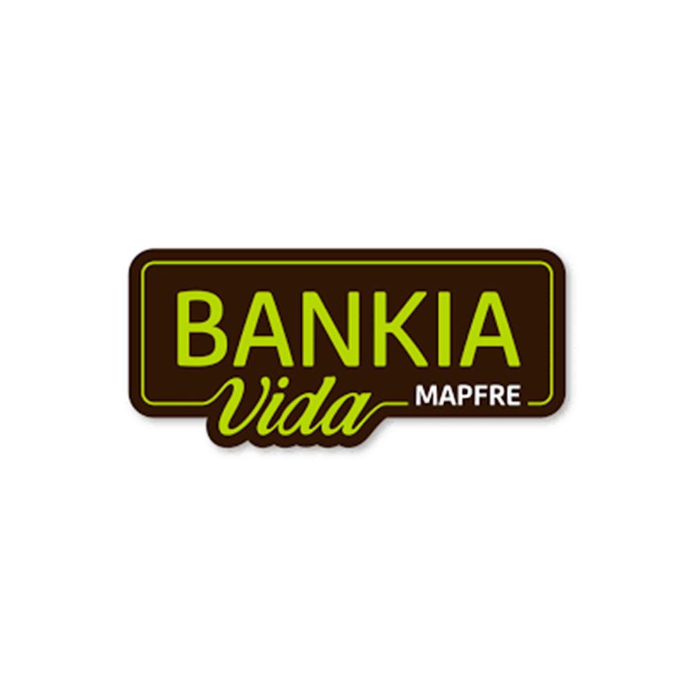 BANKIA MAPFRE VIDA, S.A. DE SEGUROS Y REASEGUROS
